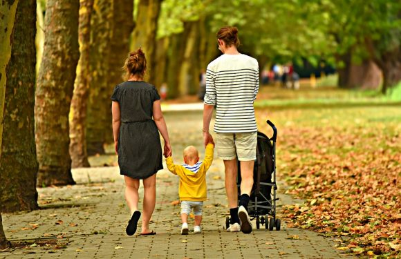 Understanding the Importance of Surrogacy